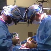 Oluigbo and Myseros neurosurgery