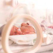 premature baby in hospital incubator
