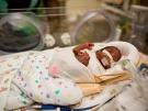 newborn in incubator