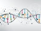 DNA moleucle
