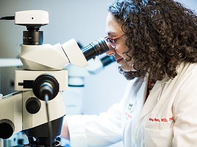 Dr. Anna Penn uses a microscope