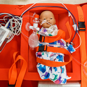 mannequin used in NICU evacuation training