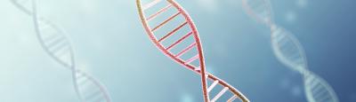 pastel colored DNA strands