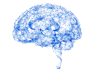 brain network illustration
