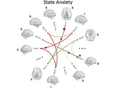 Associations Between Resting State Functional Connectivity and Behavior in the Fetal Brain