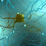 neuron on teal background