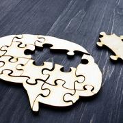 wooden brain puzzle