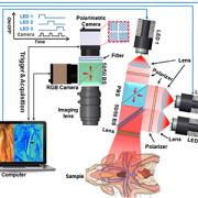 schematic of Mueller polarimetric imaging